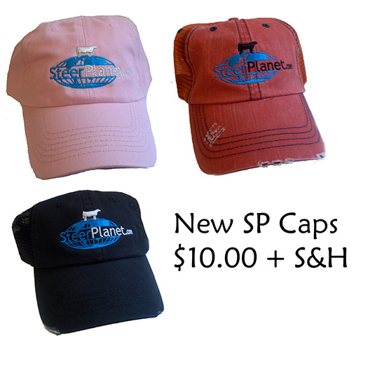 spcapwp New Steer Planet Caps $10.00