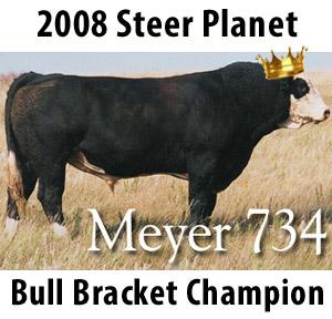 meyer734champion Steer Planet Bull Bracket Champions