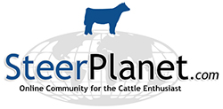 Steer Planet – Show Steers & Cattle Forum, Classifieds