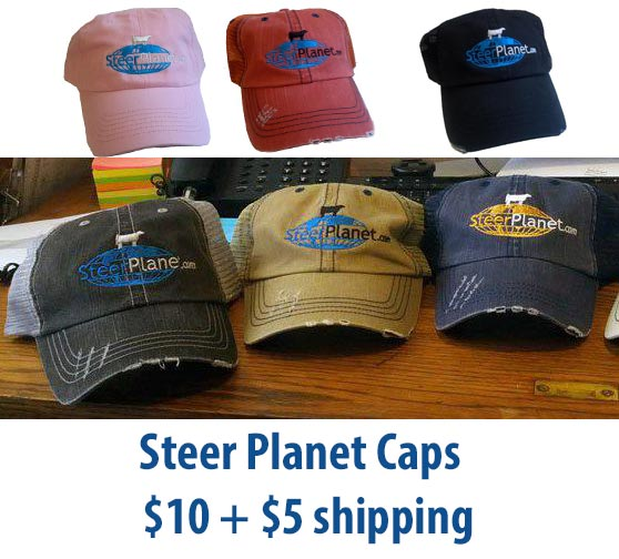 spcapsall1 Steer Planet Caps   $10.00