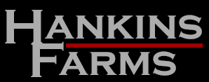 hankins logo Website Design