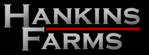 hankins logo1 Website Design