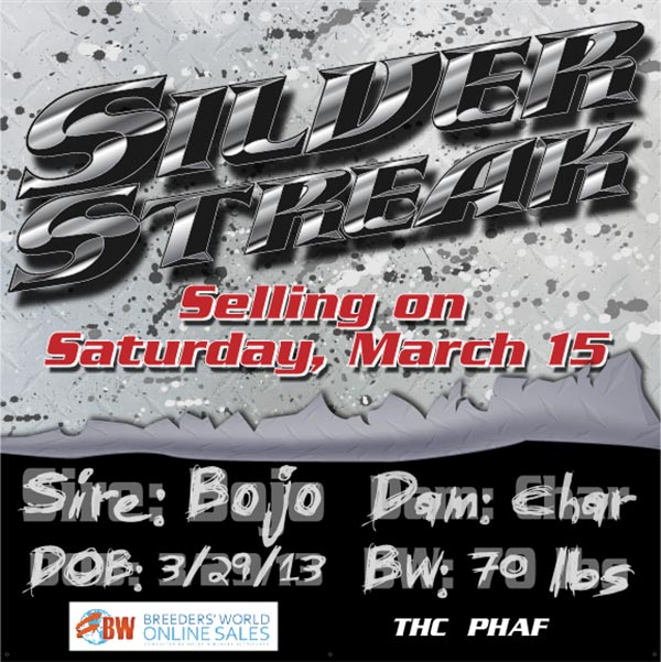 silverstreak1 Silver Streak Sells   Saturday March 15th