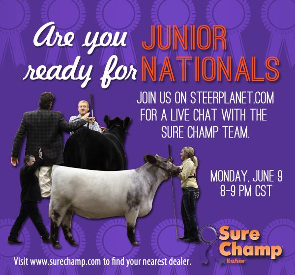 surechamp SureChamp Live Chat on SP Tonight at 8:00 pm