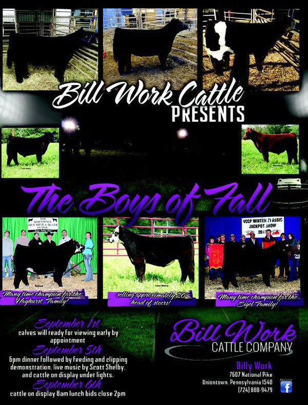 billwork boysoffalesale New Photos & Videos Posted for Boys of Fall Sale