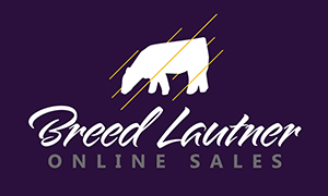 bl logo MLC Online Auction on BreedLautner.com
